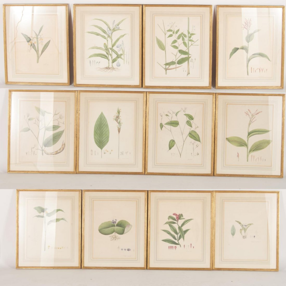 Set (12) antique French matted botanical prints