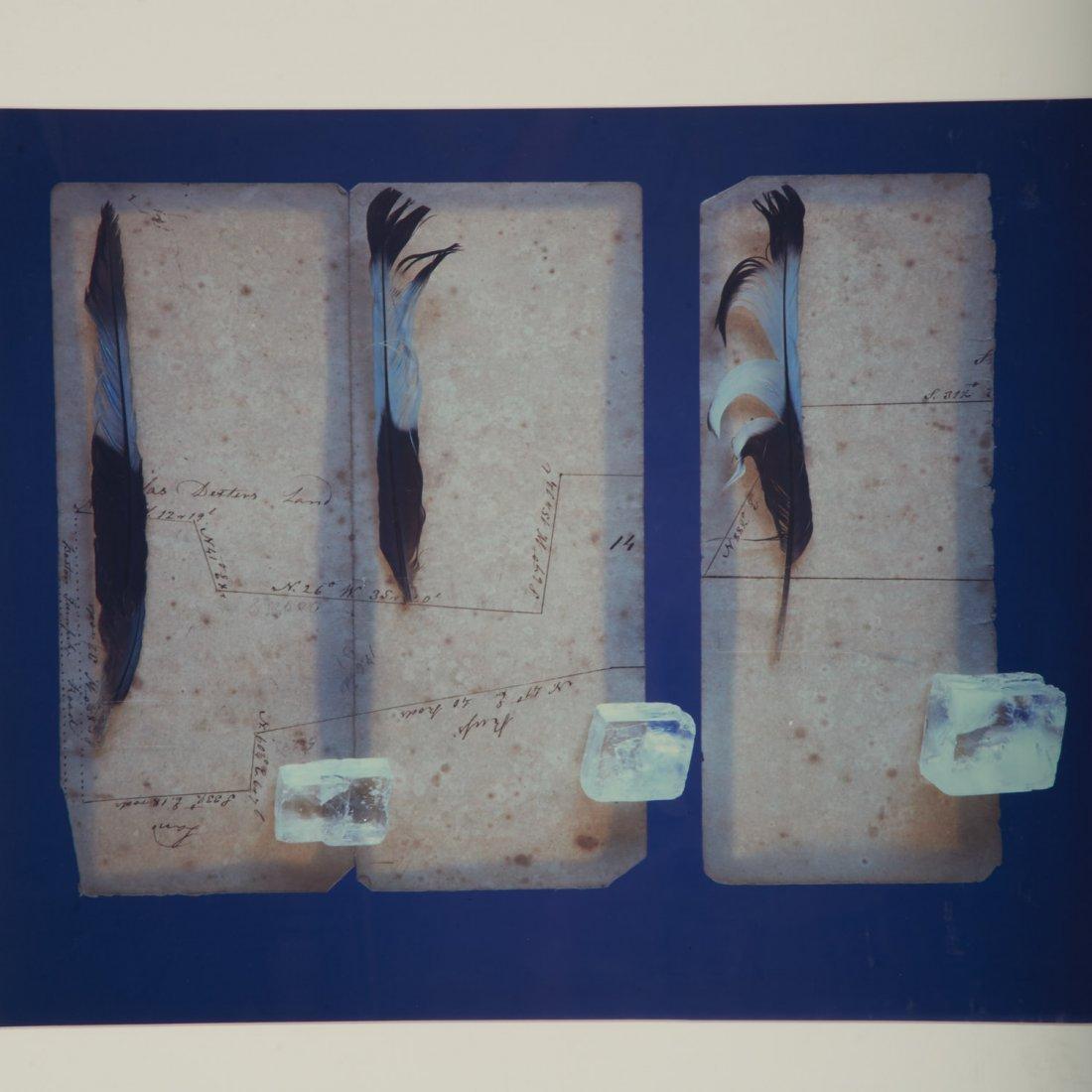 Olivia Parker, photographic print - 2