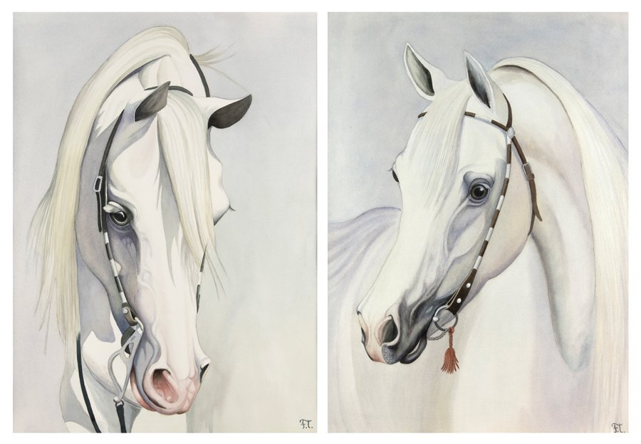 ARTIST UNKNOWN, (20th Century), A Pair of Horse Busts,