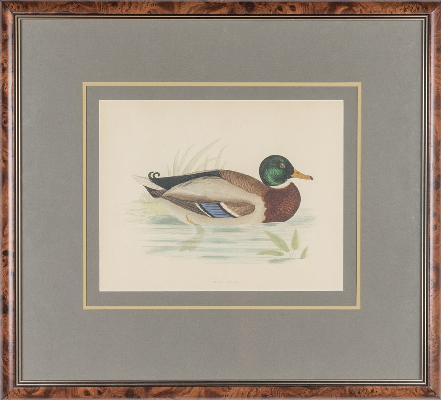A COLLECTION OF DUCK PRINTS WITH COMMEMORATIVE STAMPS - 3