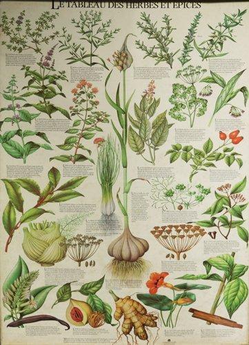 Le Tableau des herbes