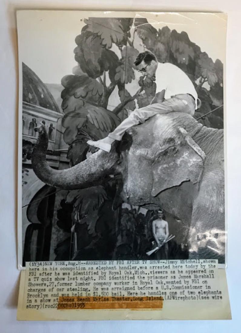 Vintage Press Photo, Associated Press , info on back of