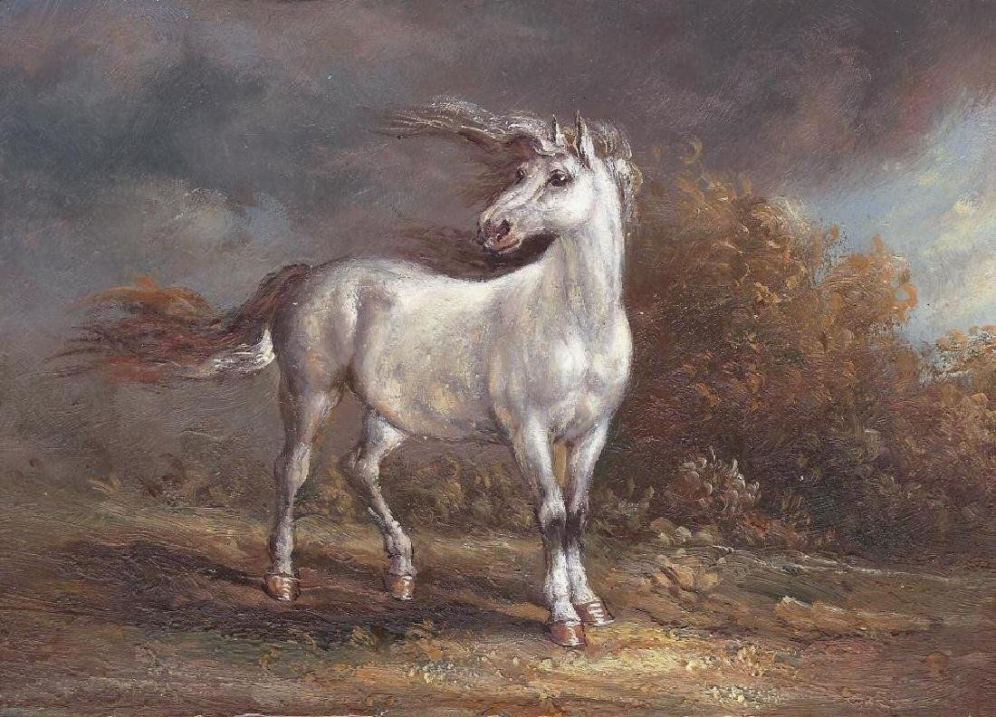 Wild Mustang Oil On Board Painting