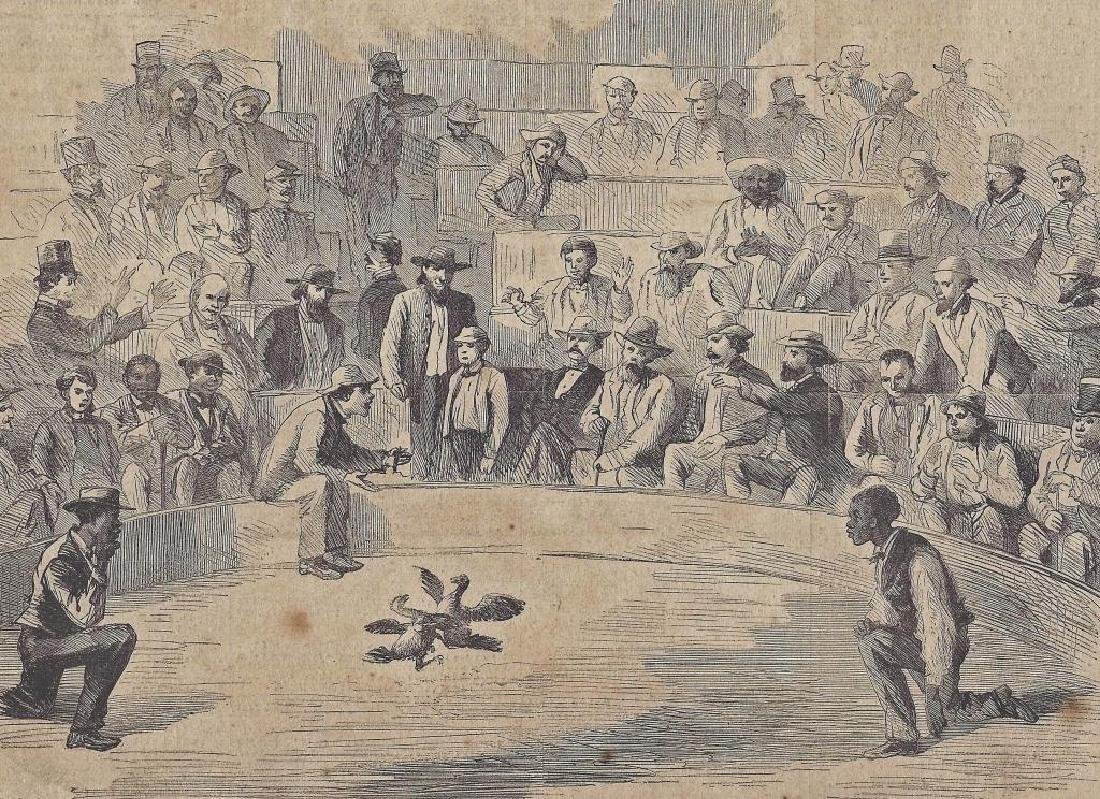 19thc Print, New Orleans Cock Fight