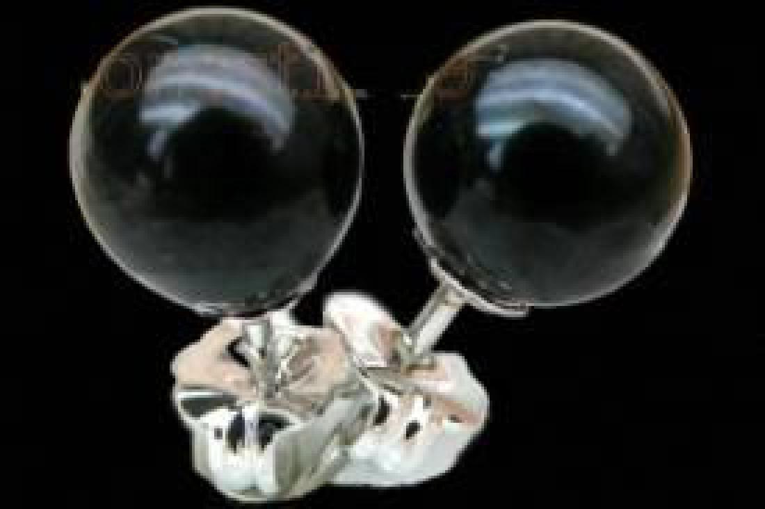 Elegant 6.5mm Aaa+++ Perfect Round Black Akoya Pearls