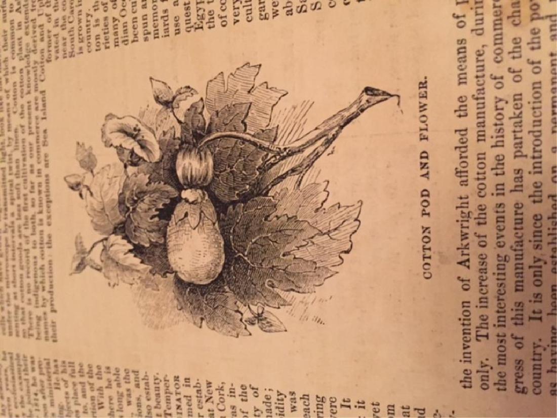 1850's Harper's Weekly & Gleason's Pictorial - 5