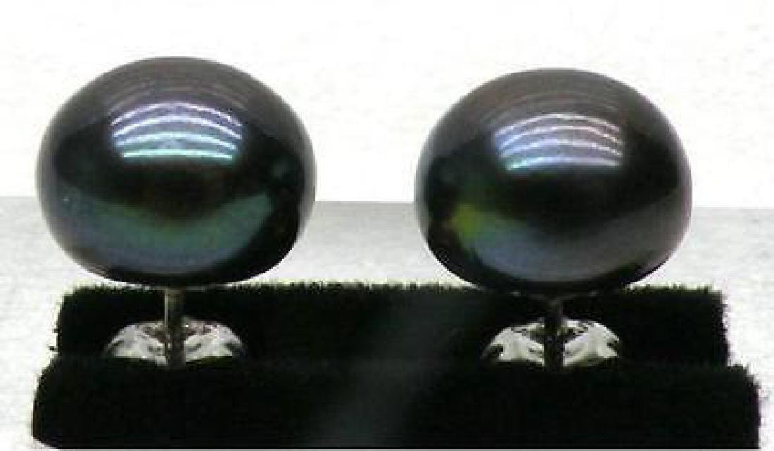 10-11mm Blue Black Aaa +++ South Sea Pearl Earrings 14k
