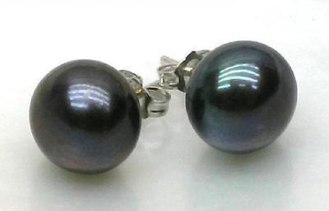 10-11mm Blue Black Aaa +++ South Sea Pearl Earrings 14k - 2