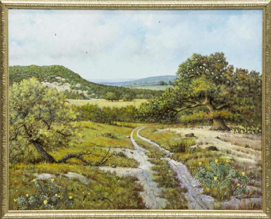 "Daniel Maldonado (Texas) Painting, ""Hill Country"""