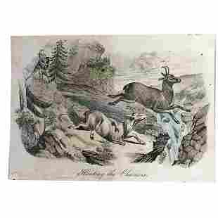 18thc Handcolored Engraving Chamois Hunting