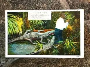 Mid Century Linen Postcard African American History