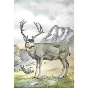 1920s Mule Deer Color Lithograph Print
