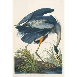 c1946 Audubon Print, #211 Great Blue Heron
