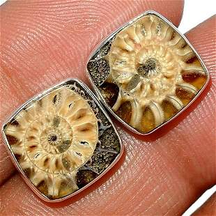 Prehistoric Fossil Ammonite Sterling Stud Earrings