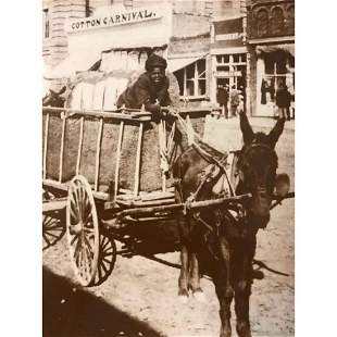 African American History, Boy & Cotton Cart Photo Print