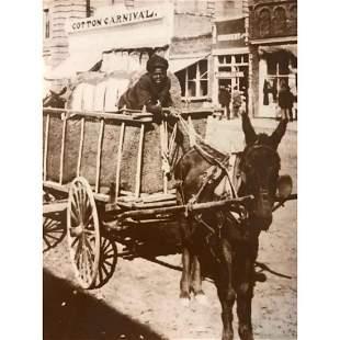 African American History, Boy & Cotton Cart Photo Print