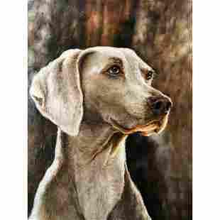 21stc Photorealism Oil Painting, Weimaraner, Hunting