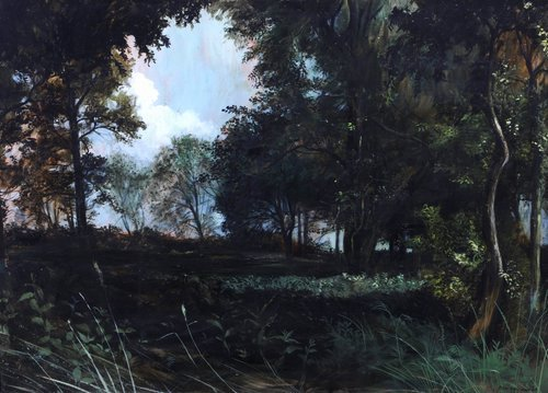 Peter Newcombe Woodland Clearing at Dusk signed an