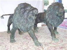 718: LIFE SIZE PAIR OF BRONZE LIONS