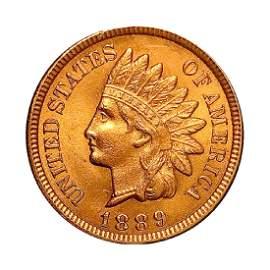 Superb - 1889 Indian Head Cent - Gem BU / MS RD / UNC -