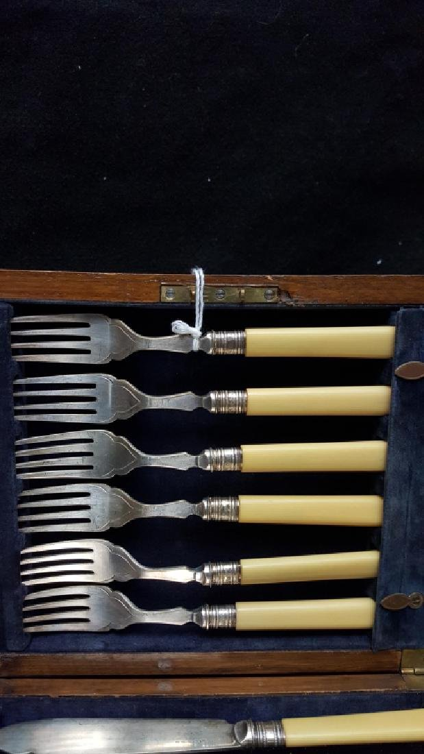 Wards' EP Silver Bakelite Handle Fork & Knife Set - 3