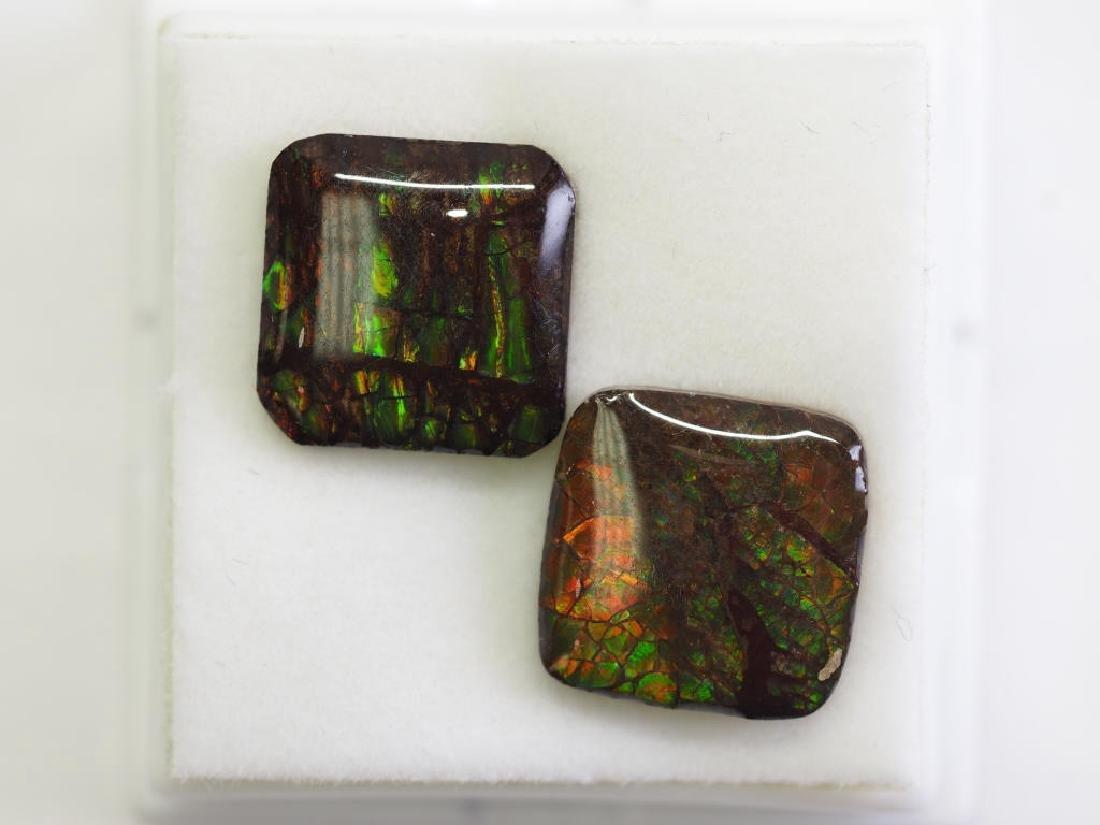 Ammolite Gemstones. Matching Pairs