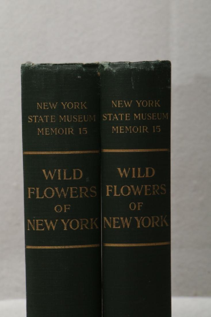 Wild Flowers Of New York, New York State Museum - 3