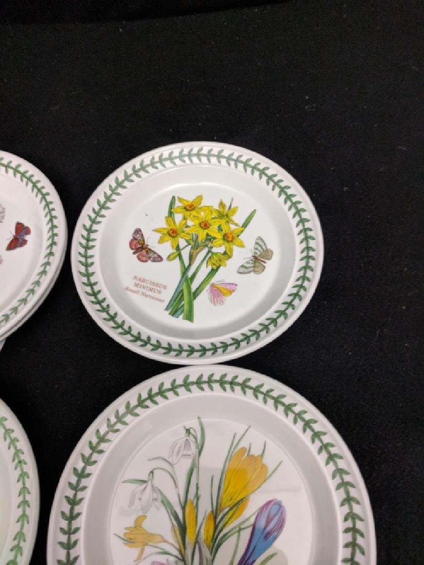 (12) Portmeirion Botanic Garden Dessert Plates - 7