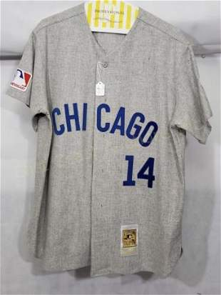 Chicago Cubs Ernie Banks #14 Mitchell & Ness