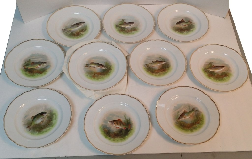 Service for 11 dinner plates