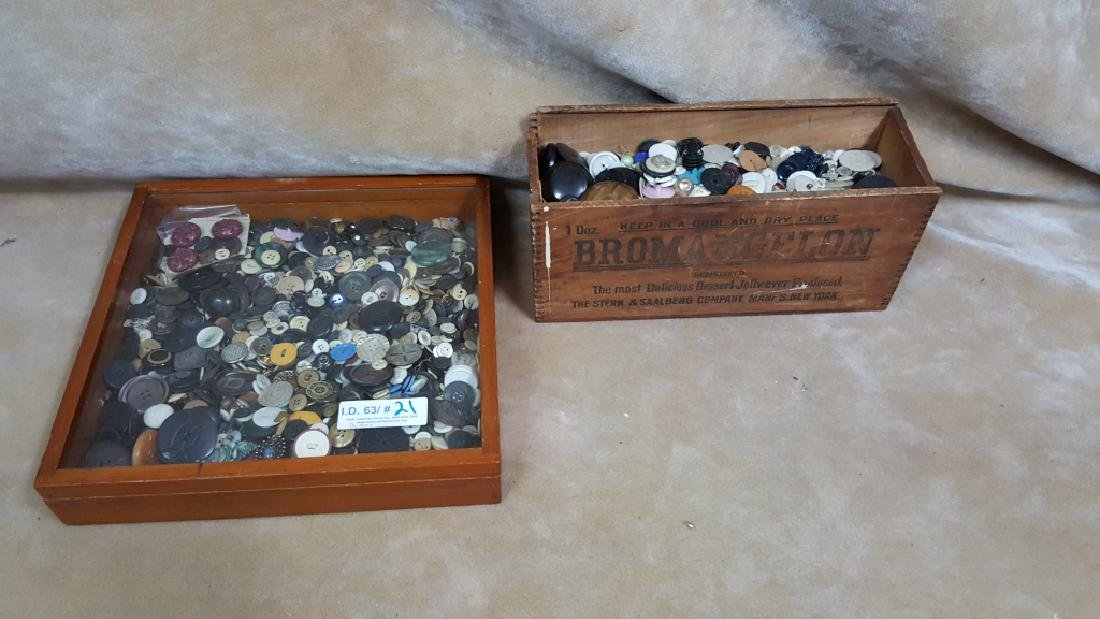 Large Estate Button Collection