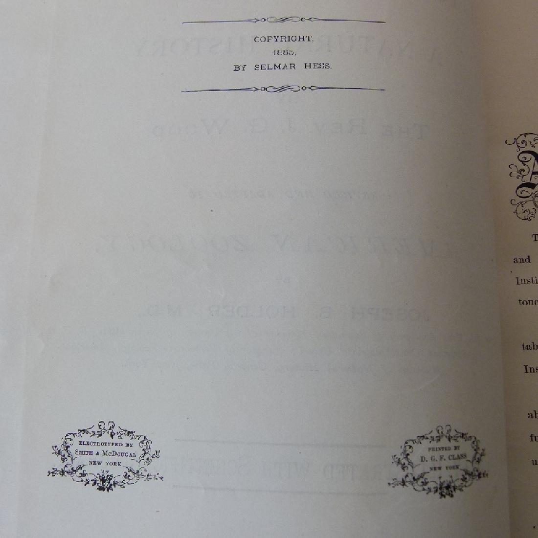 SET (3) VOLUMES ANIMATE CREATION - 4