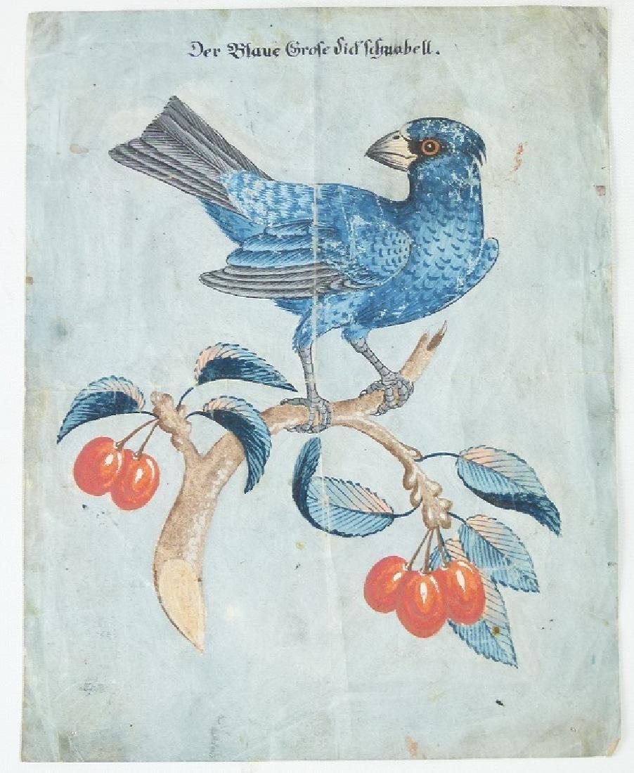 W/C GOUACHE BLUE GROSBEAK ON CHERRY BRANCH - 4