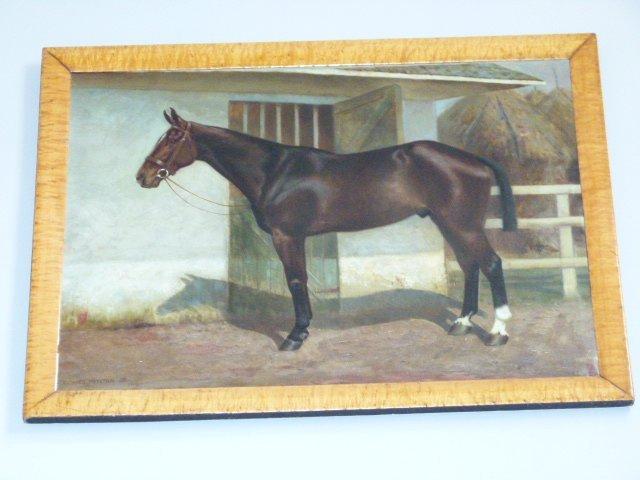 O/C Hackney Stallion Portrait R Newton Jr c.1914