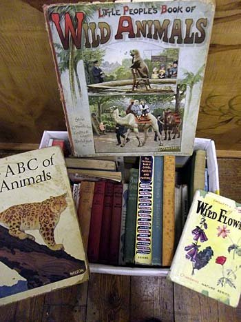 A collection of childrens books - mainly Enid Blyton, b