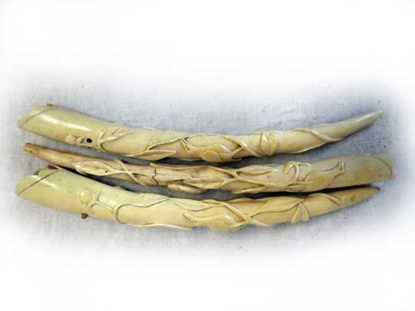 Three ivory tusks, carved with trailing leaf foliage an