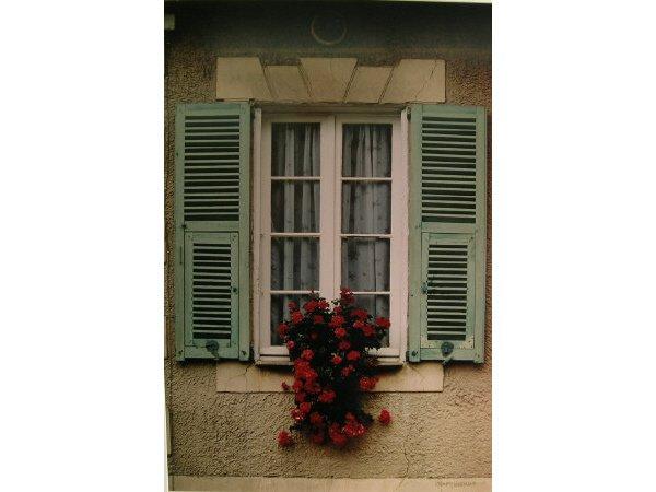 1012: Jerry Herring Shuttered Windows Photo