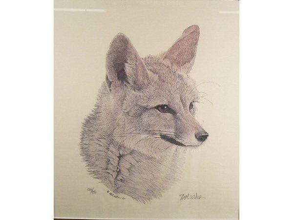 1234: Nick Wilson Kit Fox Engraving