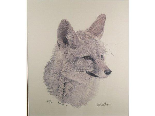 1234: Nick Wilson Kit Fox Engraving - 2