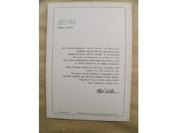 1234: Nick Wilson Kit Fox Engraving - 4