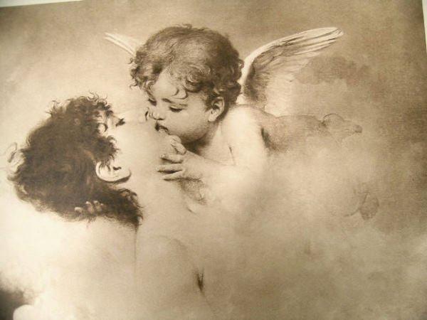 517: Martens Print Loves Dream, Angel