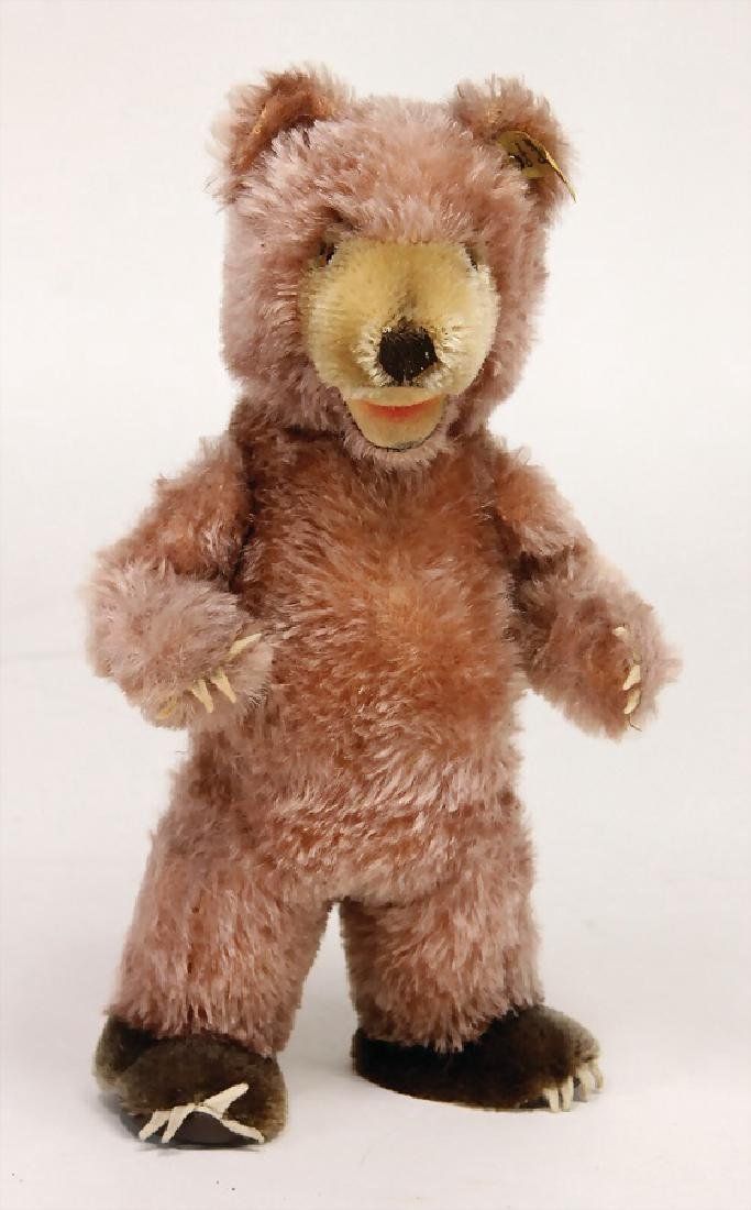 STEIFF bear, Zooby, 28 cm, with button and  cloth tag