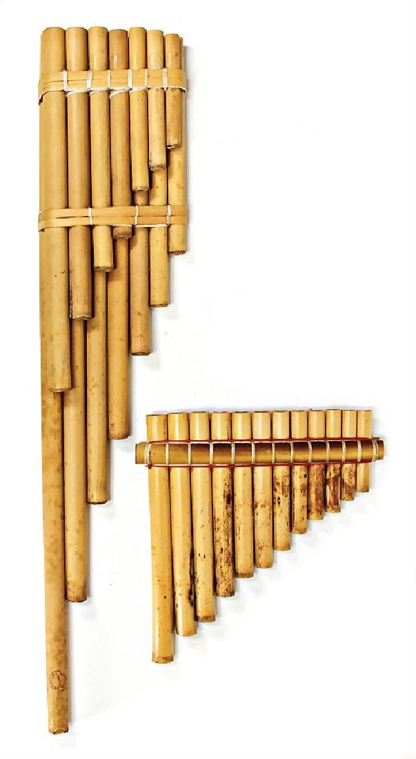 bamboo canes, 20 cm and  55.5 cm #37 638#   German