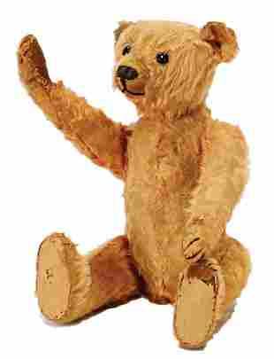 STEIFF bear, 28PB, the bear was X-rayed, and has the