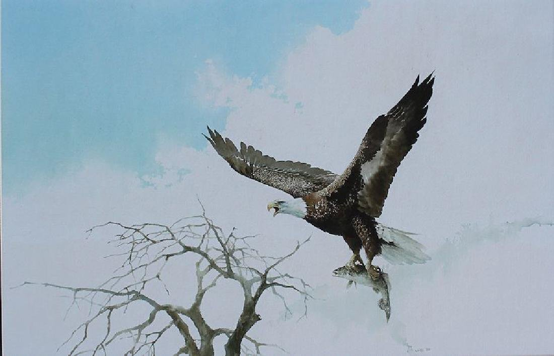 JAN WILLS SUPERB PAINTING OF EAGLE & TROUT