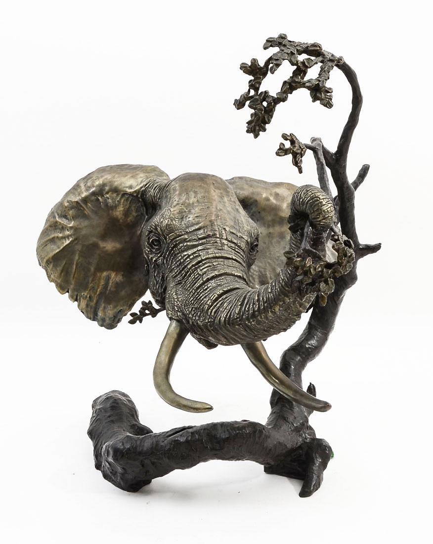 MARK HOPKINS ELEPHANT BRONZE