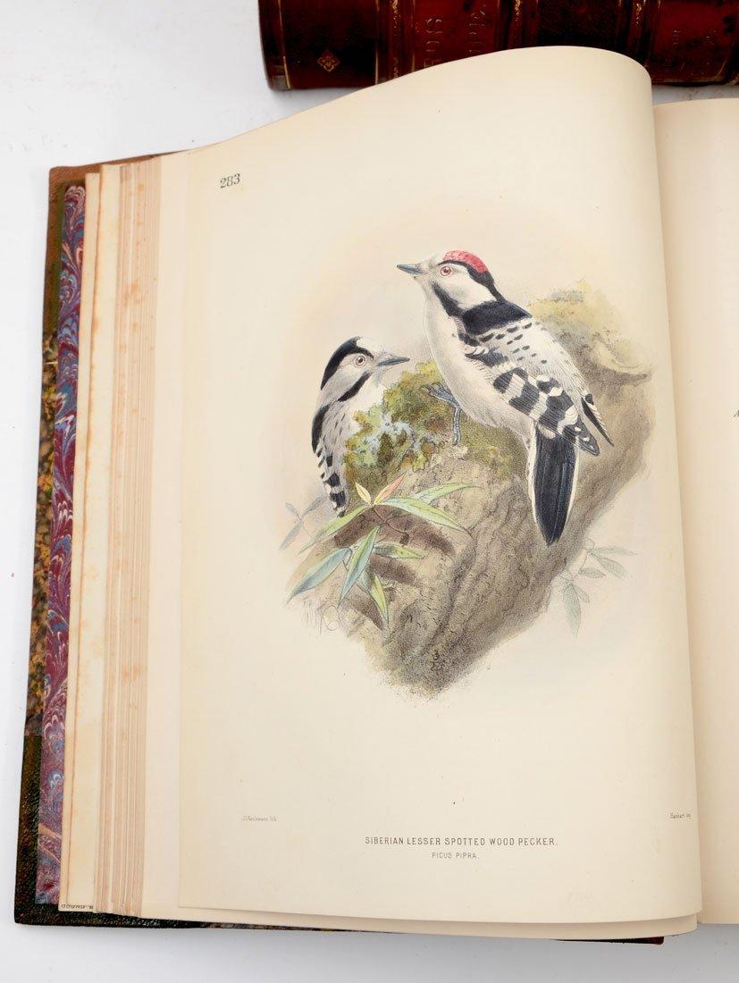 H. E. DRESSER 9 VOL HISTORY OF THE BIRDS OF EUROPE - 5