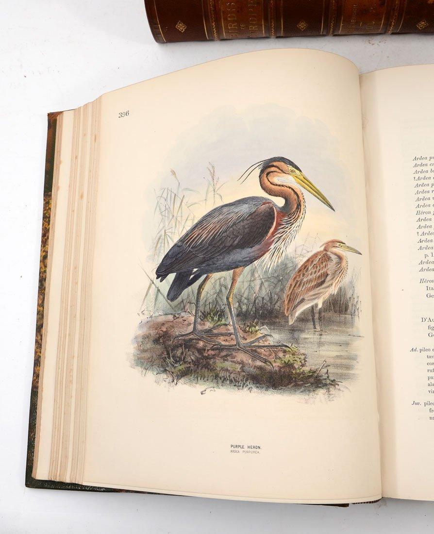 H. E. DRESSER 9 VOL HISTORY OF THE BIRDS OF EUROPE - 6