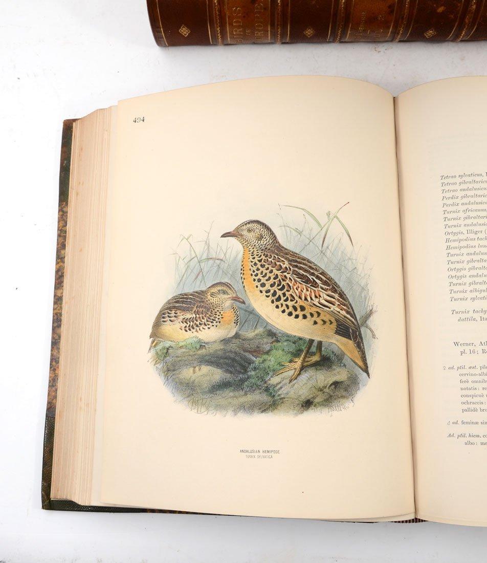 H. E. DRESSER 9 VOL HISTORY OF THE BIRDS OF EUROPE - 8