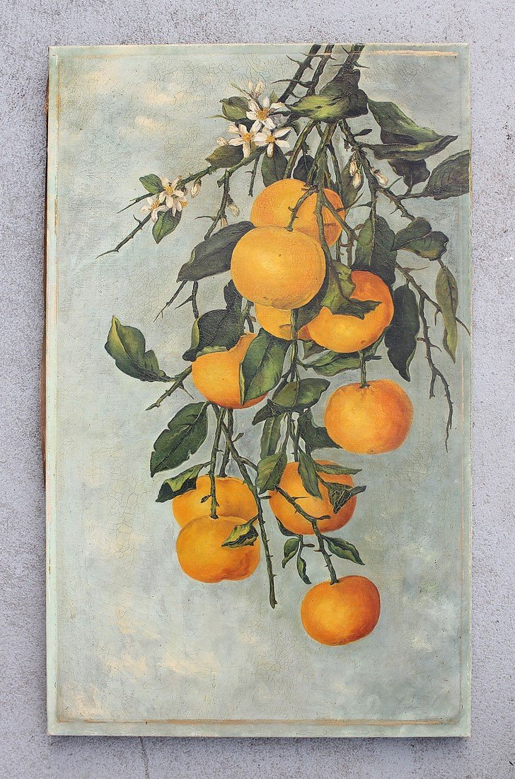 UNSIGNED PAINTING OF FLORIDA GRAPEFRUIT CIRCA 1900